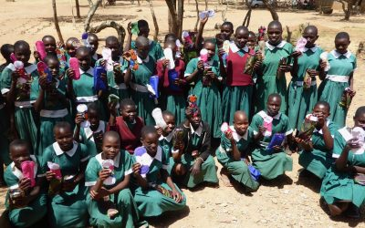 Amazing Results from Sanitary Pad Project