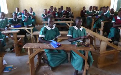 The Impact of the Virus on Girls